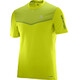 Salomon Fast Wing SS Shirt Men lime punch/lime green